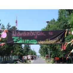 Falunap 2006