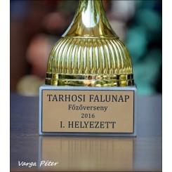 Falunap Tarhoson- 2016.08.06. II. rész